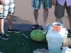 How many guys does it take to figure out a vodka watermelon?